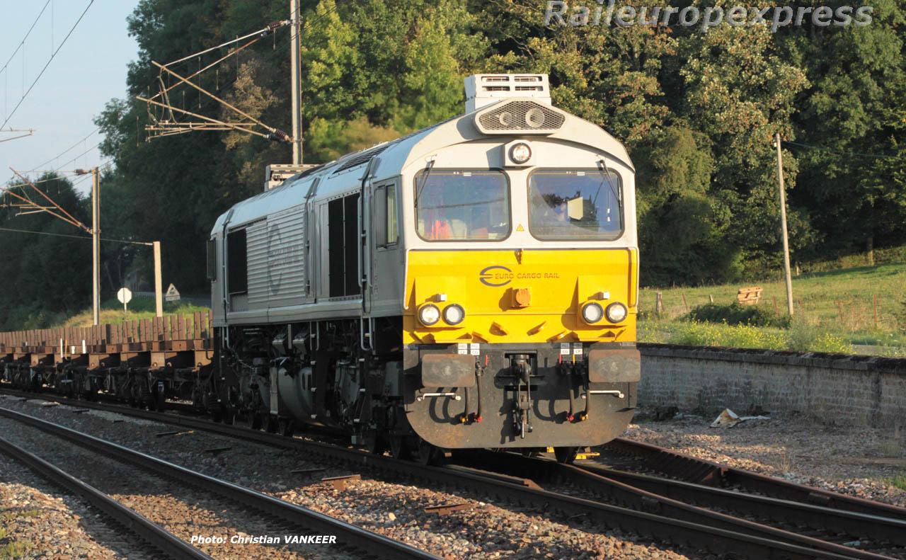 Class 77 ECR