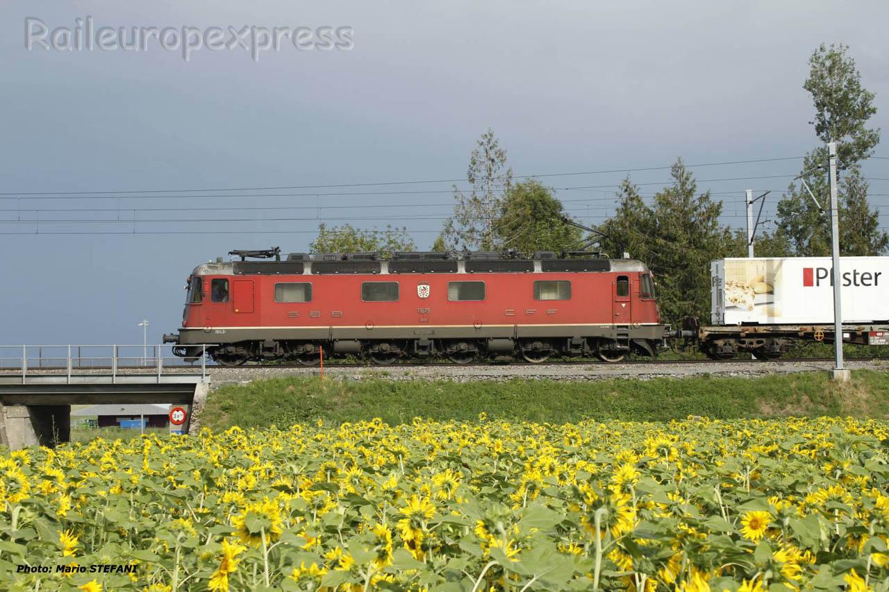 Re 6/6 11619 CFF à Boudry (CH)
