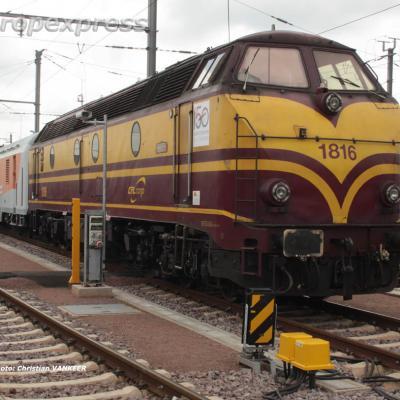 CFL 1816