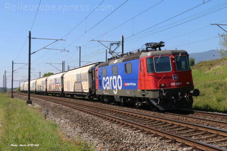 Re 420 246-1 CFF à Auvernier (CH)
